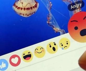 Facebook me gusta nuevo